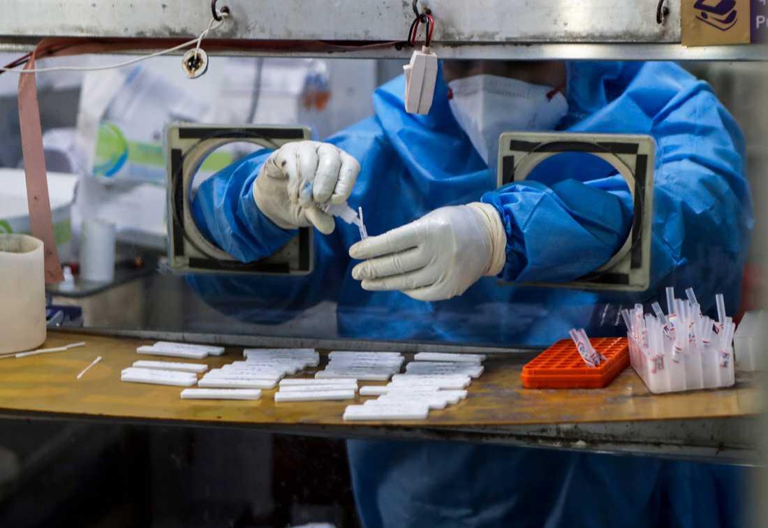Un operatore sanitario raccoglie i test COVID-19 all'ospedale municipale di Mumbai.  Molti casi indiani di doppia mutazione sono stati ora trovati in paesi come il Regno Unito, la Danimarca e la Norvegia.
